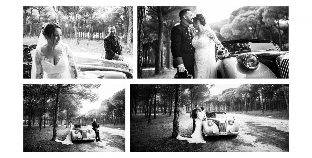 fotos de boda en un pinar